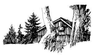 June Opening Cabin