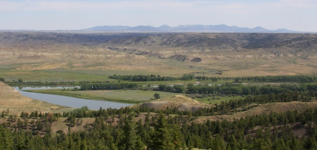 The Charles M. Russell National Wildlife Refuge in northern Montana has been cited as an excellent setting for bison relocation and efforts could partner with private initiatives led by the American Prairie Reserve to repopulate bison across a mixed landscape of public and private lands.
