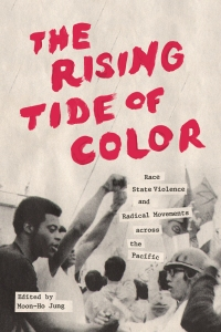 """The Rising Tide of Color"" edited by Moon-Ho Jung"