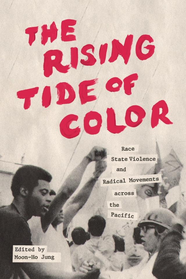 """""""The Rising Tide of Color"""" edited by Moon-Ho Jung"""