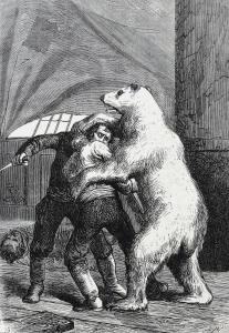 """The bear gripped them both."" Art by Adrien Marie and Barbant from ""Le Docteur Ox"" by Jules Verne (1874)."